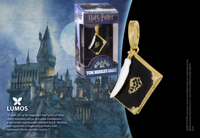 Lumos Charm 11 Tom Riddle's Diary