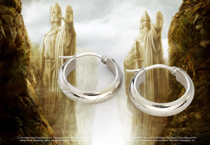 One Ring Earrings Stainless Steel