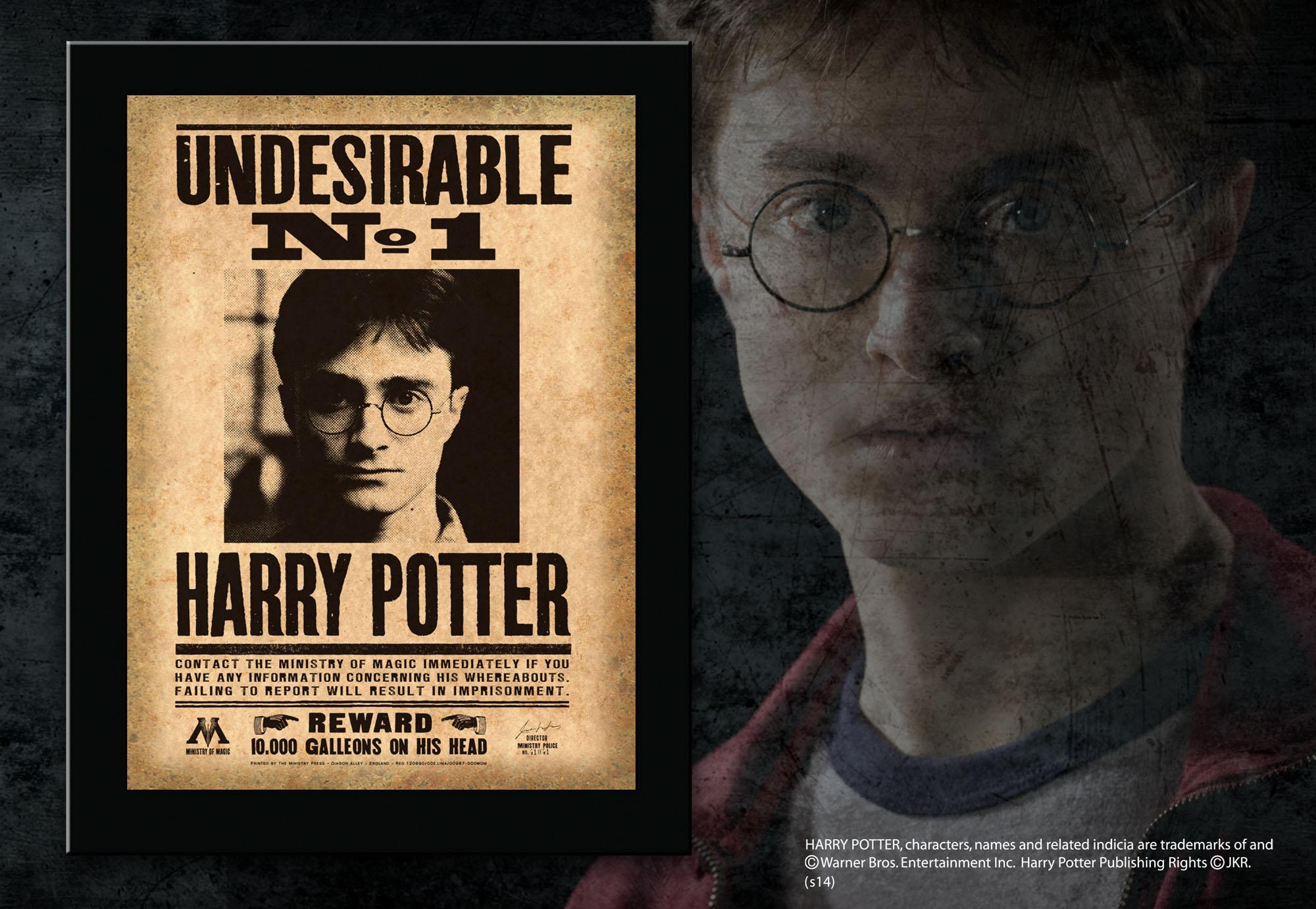 Постер разыскивается гарри поттер